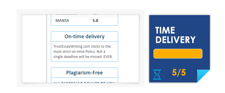 TrustEssayWriting Time Delivery