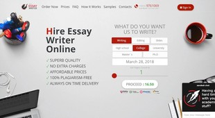Preview pro essay writer